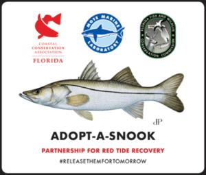Adopt - A - Snook