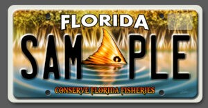 Conserve Florida Fisheries License Plate